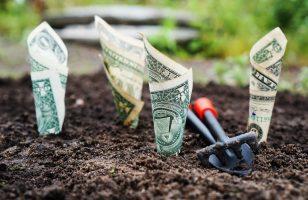 Weź pożyczkę i wygraj kartę upominkową do OBI. Wiosenny konkurs w Wandoo