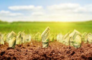Weź udział w Wiosennym Konkursie Ferratum i wygraj spłatę pożyczki