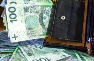 polskie banknoty i portfel